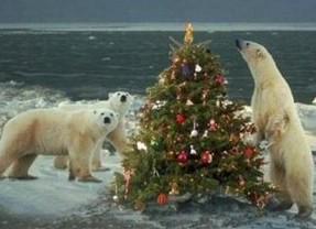 polar_christmas_tree