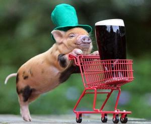 images_pig_cute_shopping