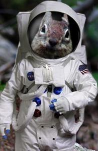 images_squirrel_astronaut