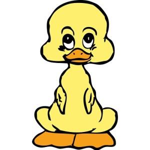 duck-clipart-13