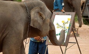 images_creative_elephant