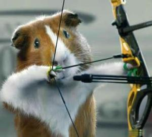 images_funny_hamster_bow_arrow