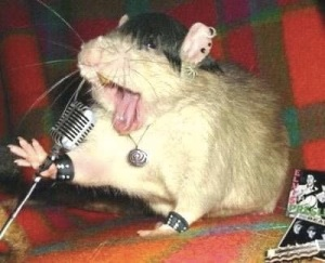 images_funny_mouse_singing