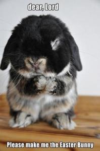 images_funny_bunny_easter