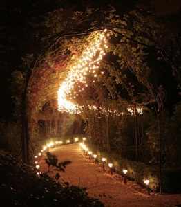 images_lighting_the_path