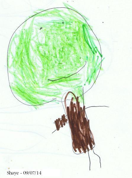 Shaye's drawing_tree