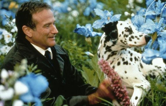 robin_williams_with_dalmatian