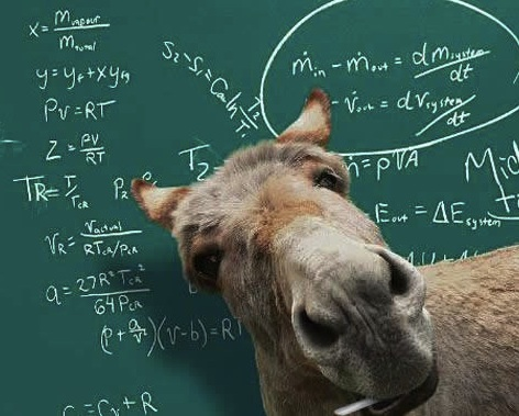 New Math Teacher   (Photo credit: www.funxite.com)