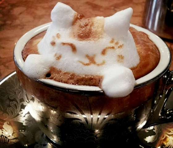 coffee with cat foam