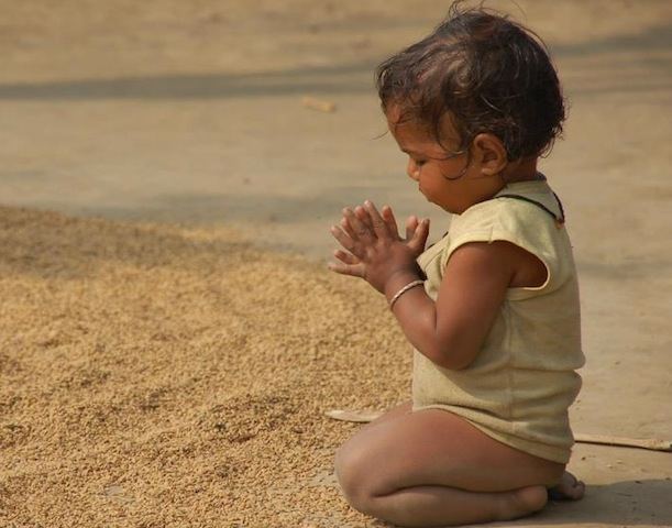 cute toddler praying