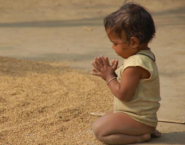 cute toddler praying