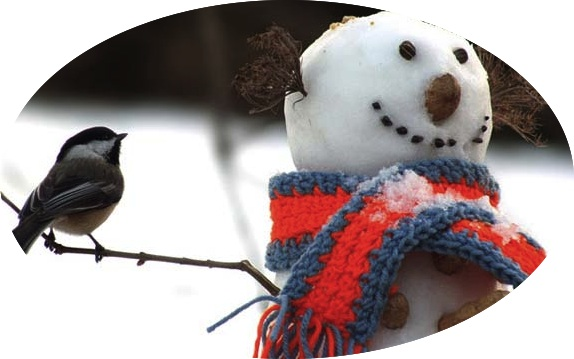 bird and snowman