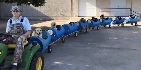 doggie train