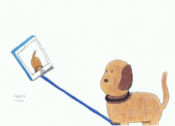 funny dog - selfie stick