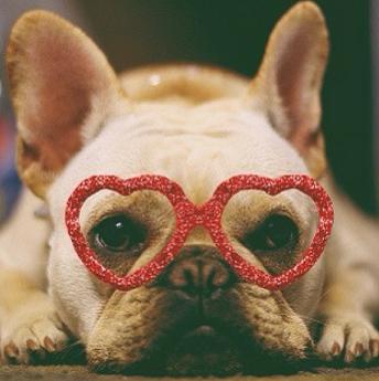 heart-glasses