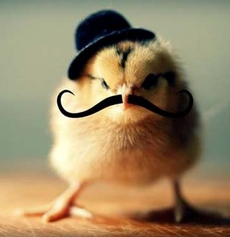 chick with mustache