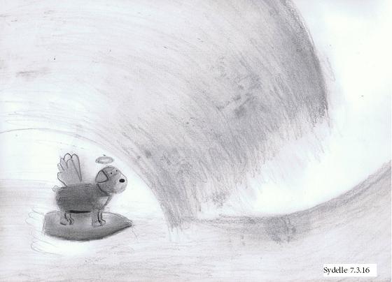 Zap surfing