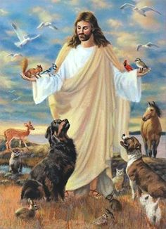 jesus and our beloved dogs