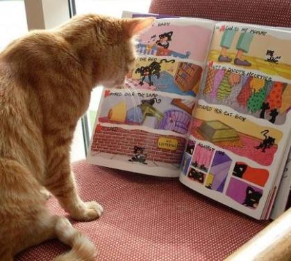 cat reading comic
