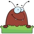 cute flea