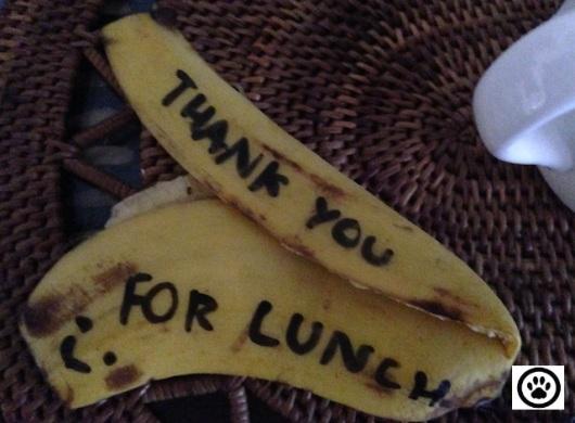 thanks for lunch.jpg