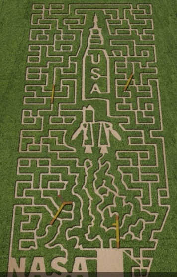corn maze-7.jpg