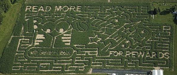 corn maze-9