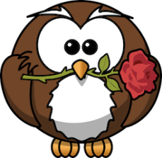 owl-with-rose-clipart