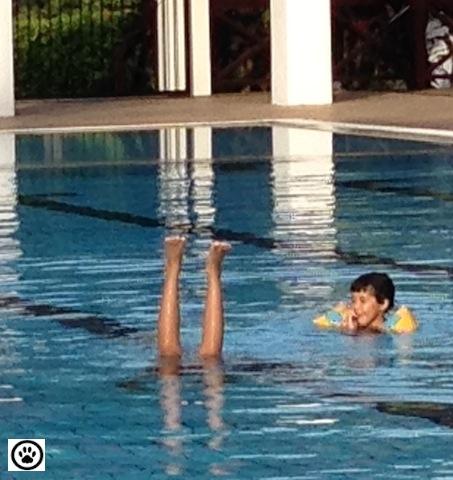 fun-in-the-pool