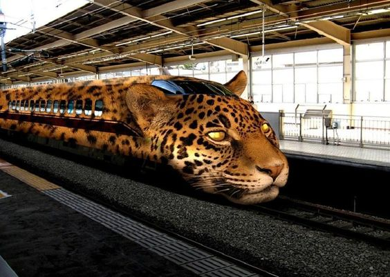 leopard train.jpg