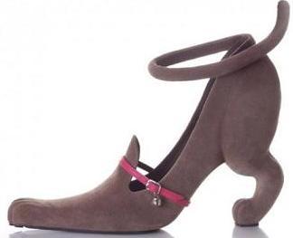 funny cat high heel.jpg