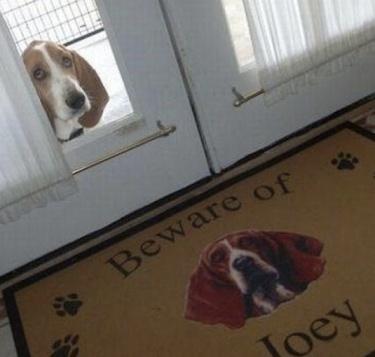 beware dog sign