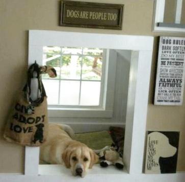 cute doggie space