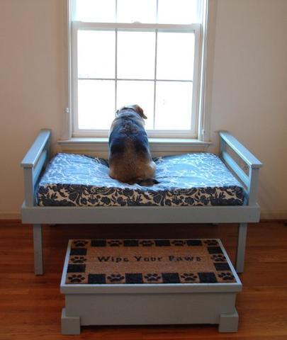 dog's room-3.jpg