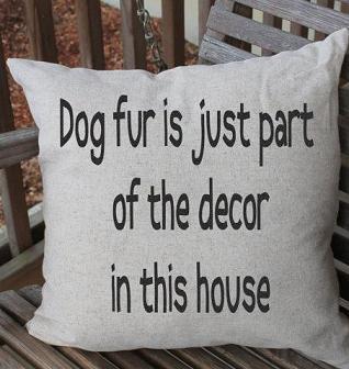 funny pillow.jpg