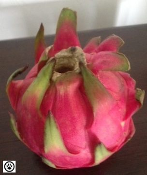 dragon fruit-1