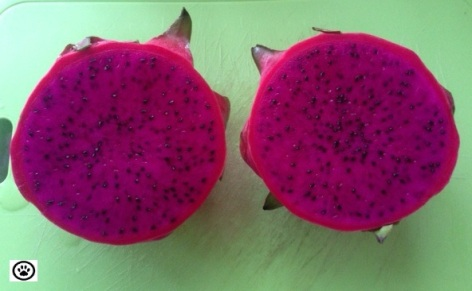 dragon fruit-2.jpg
