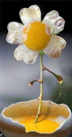 flower egg.jpg