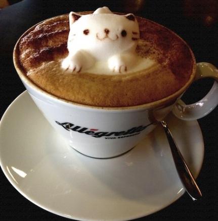 catpuccino-2