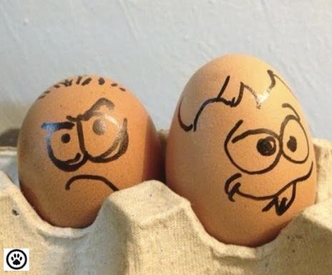 cute egg faces