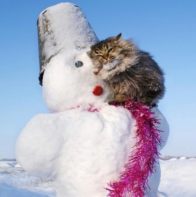 cat with snowman.jpg