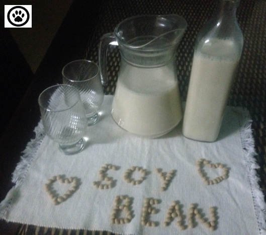 homemade soymilk