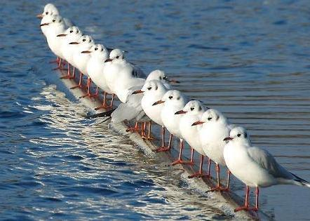 be different-1