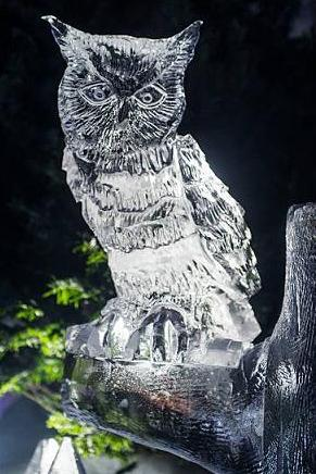 owl ice sculpture