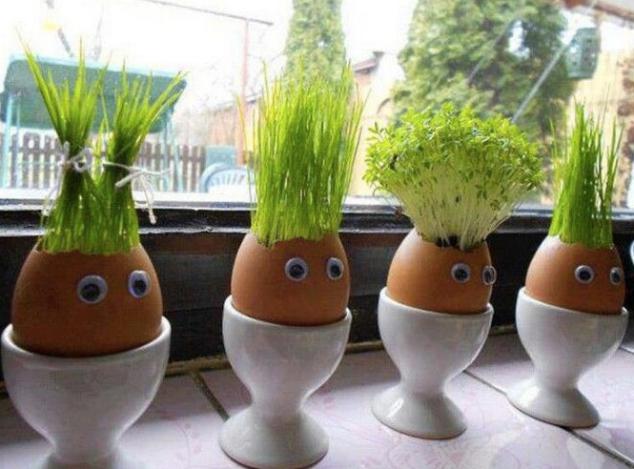 egg plants.png