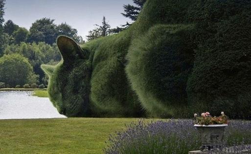 big cat topiary.jpg