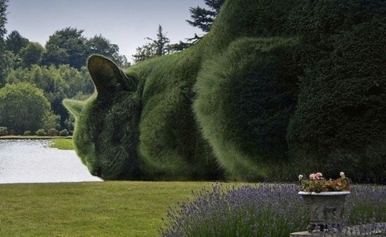 big cat topiary.jpg