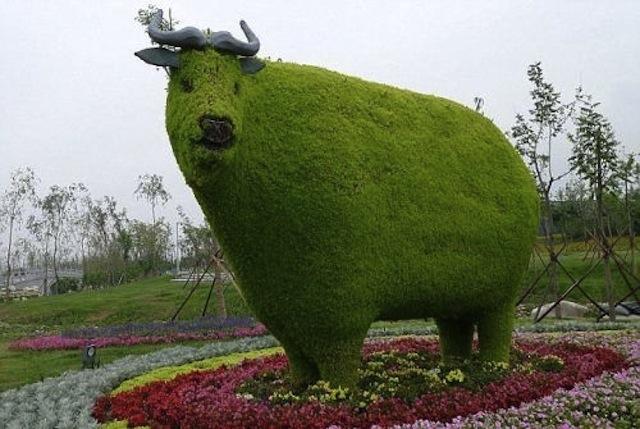 Topiary-bull