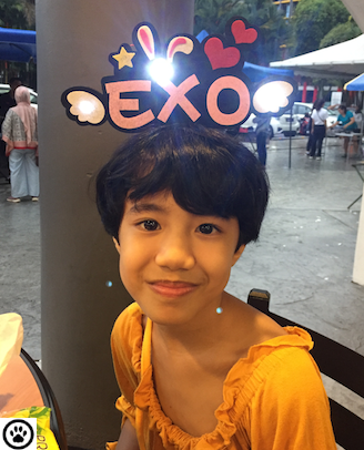 exo hairband