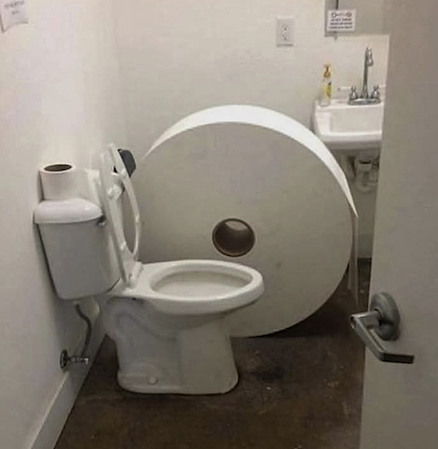 just one toilet roll